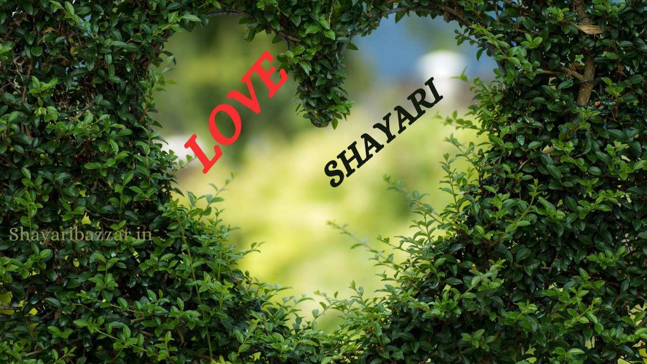 Love Shayari In Hindi For Love Status